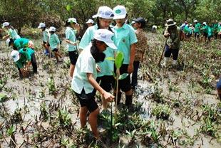 写真は、タイ・ラノーン県での植樹活動