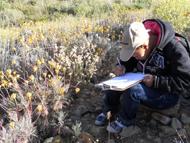 南アフリカ 自然体験教室での自然観察会の様子