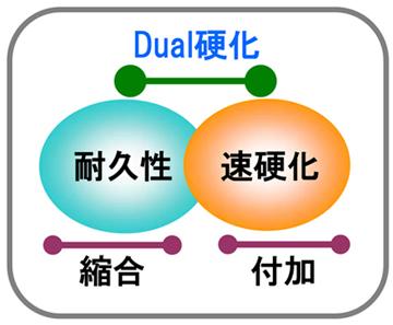 「デュアル型」のイメージ図