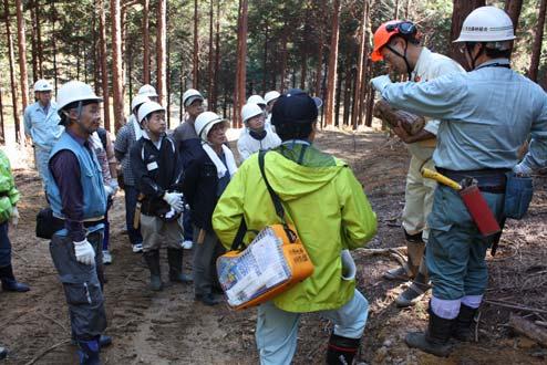 長野県池田町での間伐作業の様子