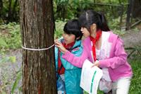 森林教室の様子