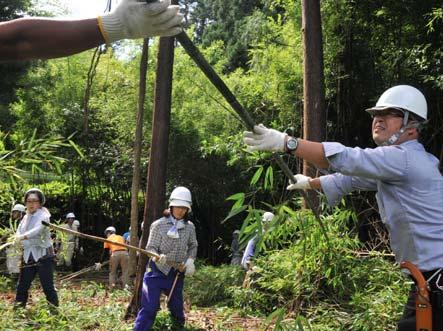 間伐作業に取り組む社員ら