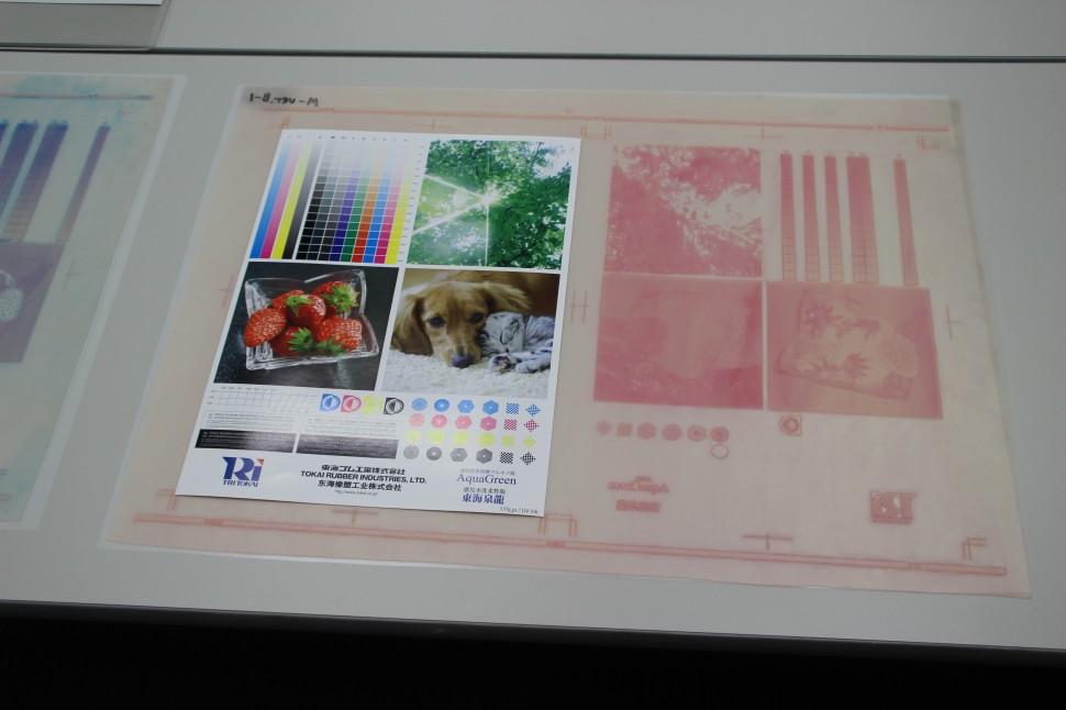 AquaGreenで製造したフレキソ版と印刷画像