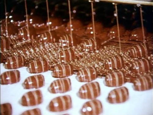 製菓工場で使用される軽搬送用ベルト