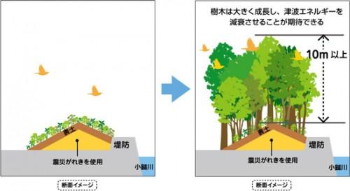 「いのちを守る森の防潮堤」イメージ