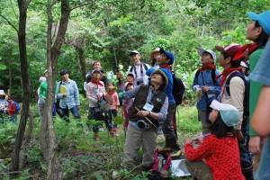 講師による森の役割の説明