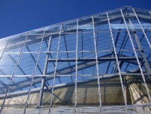 「超天」を展張した施設園芸ハウス