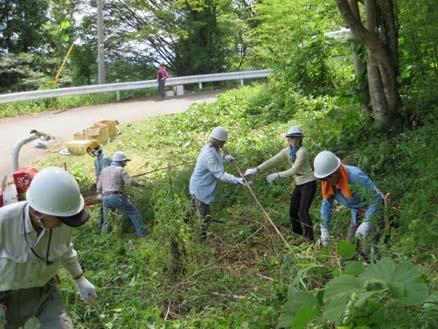 竹の間伐作業に汗を流す参加者