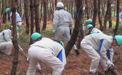 森林保全活動の様子