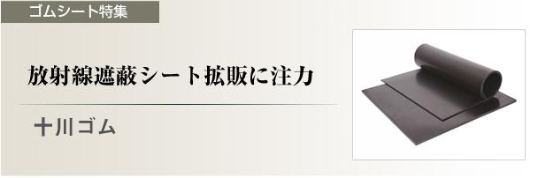 tokusyu_