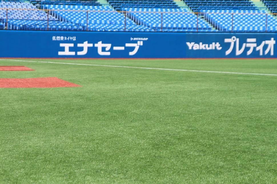 神宮球場の人工芝(レフト側)