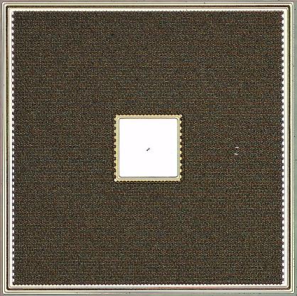 開発したMOSFETチップ(顕微鏡写真)