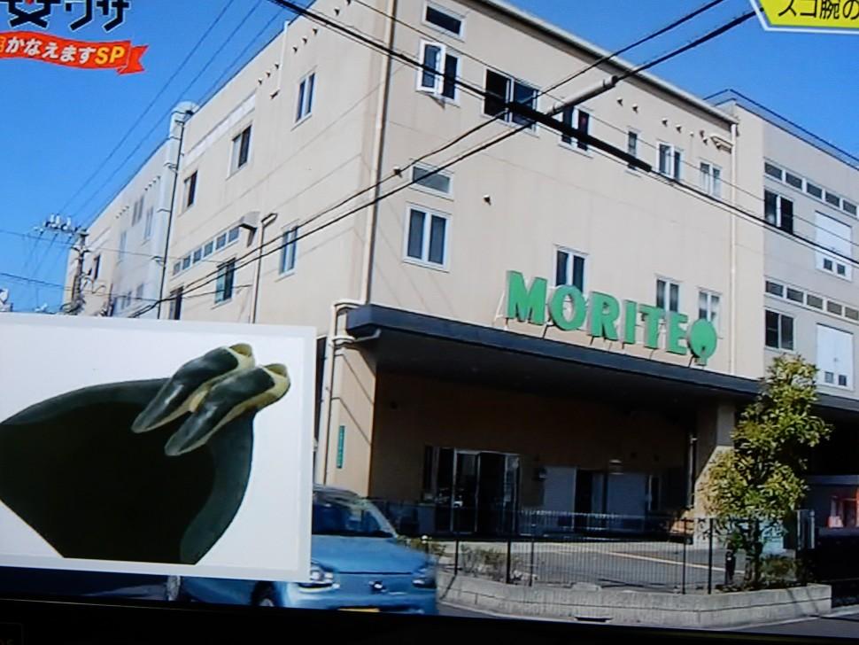 NHK「超絶 凄ワザ」番組の一コマ