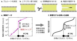 速度ジャンプの実験方法とその再現モデル