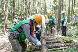 愛知県「人と自然との共生を目指した森づくり活動(間伐)」の様子