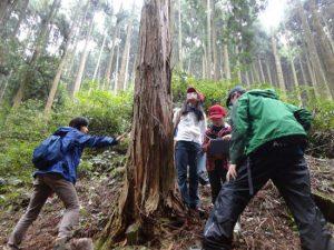 「エコピアの森・久留米」での森林教室の様子
