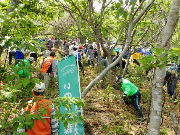 「めぐりの森」での植樹の様子