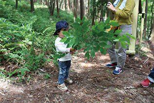 森の素材を集める子ども