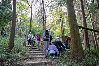 森林内探索イベントの様子