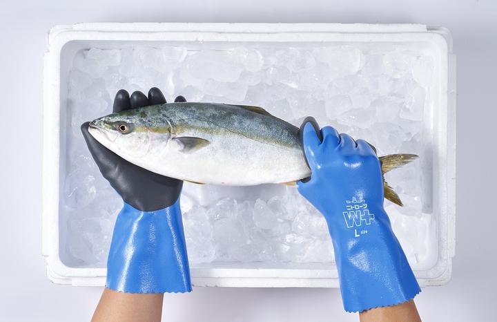 漁業・水産加工のプロに