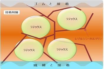 RFL接着剤の模式図