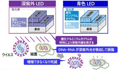 青色LED(照明用光源)との違い
