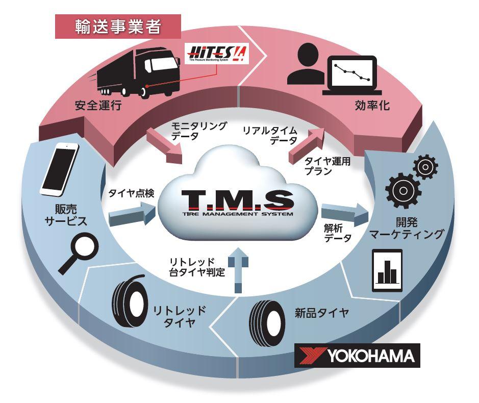 「TMS」の概念図