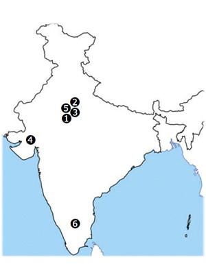 インドにおける事業体制
