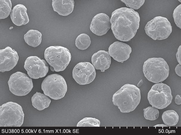 同シリーズの電子顕微鏡写真