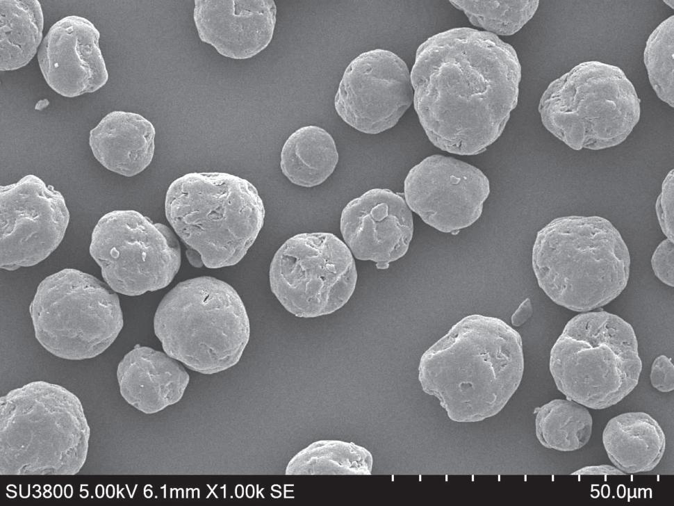 テクポリマーBIO EFAシリーズ電子顕微鏡写真